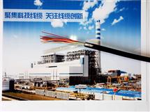 GS-HRPVSP软芯屏蔽电缆