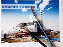 防水橡套软电缆JHS 1芯*16平方