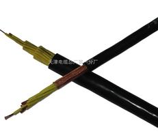 计算机电缆 DJYPV-22 -2*2*1.5