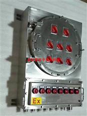不锈钢防爆动力控制箱 IIC防爆动力控制箱 防爆动力控制箱