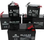 SEALEAD电池官网