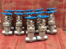 WZ61W-300LBP不锈钢波纹管承插焊闸阀