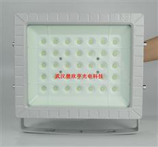 LNG加气站LED防爆灯100WLED防爆投光灯150W 70WLED防爆应急灯