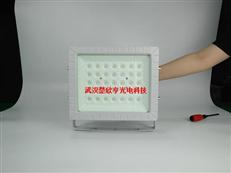 氨水库LED防爆灯70WLED防爆投光灯 100WLED防爆灯