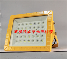 工业废水厂LED防爆灯70WLED防爆投光灯100WLED防爆灯150W