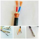 ASTP-120Ω 2*24AWG铠装屏障电缆
