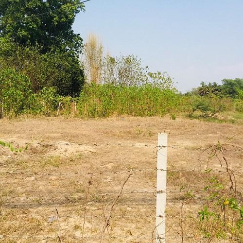 S1062 清迈土地出售 黄色地契