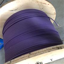 PROFIBUS双芯通讯电缆