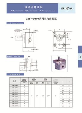 CBS-D300系列雙向齒輪泵