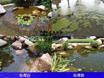 景观水处理设备(学校,住宅,旅游区)
