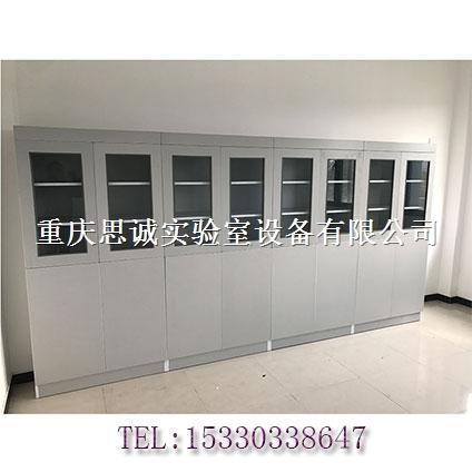 定制各种钢制实验室家具全木药品柜文件柜