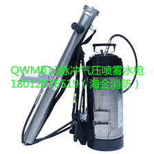 QWMB12背負式脈沖氣壓噴霧水槍