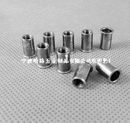 小頭鉚螺母/不鏽鋼鉚接/鋁鉚接
