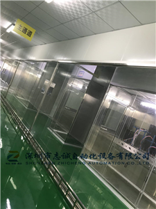 Auto lighting oil spraying equipment automatic painting equipment auto parts fuel injection line - Zhicheng