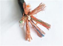 电缆DJFVP氟塑料计算机电缆