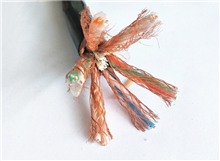 电缆DJFPV氟塑料计算机电缆