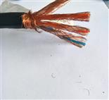 阻燃双屏蔽计算机电缆ZR-DJYPVP
