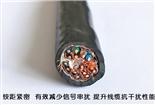 供应DYPVP计算机电缆