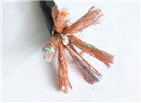阻燃屏蔽电缆ZR-DJYPVP