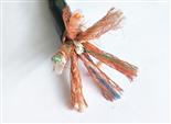 铝箔屏蔽计算机电缆 DJYVP3 24X2X0.75