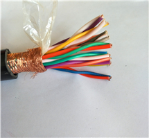 12*2*0.5 计算机电缆DJYJPV