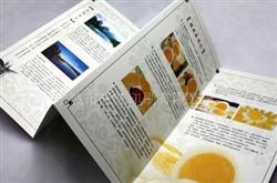 宁波印刷厂_宁波折页印刷厂_宁波宣传折页印刷厂