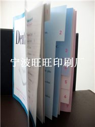 样本 画册 说明书 彩页 印刷厂