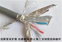 ASTP-120Ω-2*2*16AWG铠装电缆