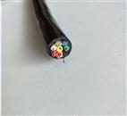 ZR-KVVRP22电缆;阻燃铠装屏蔽控制电缆