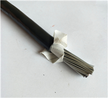 本安电缆 IA-KRYV