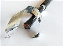 DJFPF 6*2*1.5耐高温计算机电缆