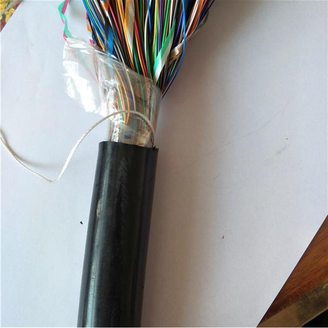 管内穿放室内配线电缆 HPVV