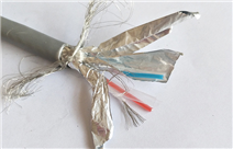 PROFIBUS 快速标准电缆 G