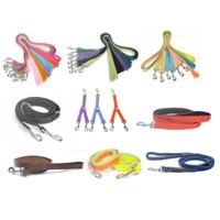 DOG101 dog belt