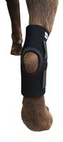 DOG210 dog leg support