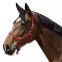 HORSE107 horse bridle