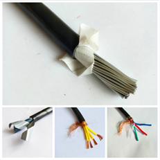 变频电缆ZR-BPYJVTP2