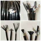 钢带直埋电缆MKVV22