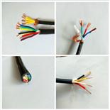 屏蔽电缆DJYVP2*2*1.0