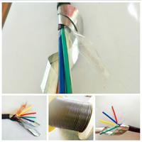 多芯屏蔽电缆KFVP