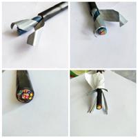 铠装耐火控制电缆NH-KVV22 2*6