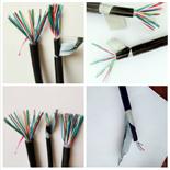 2芯对绞屏障线缆RVSP