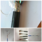 PTY23 铁路信号电缆型号PTY23 铁路信号电缆型号