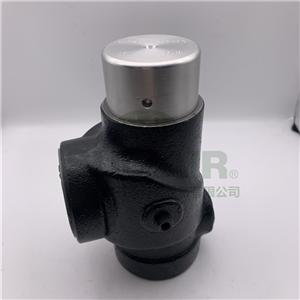 02250097-598寿力最小压力阀