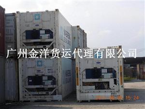 广州冷藏冷冻集装箱租售