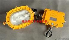 海洋王BFE8120內場強光防爆應急泛光燈BFE8120-J35