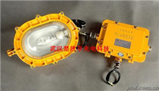 SW8102 防爆LED应急灯 尚为防爆应急灯 尚为照明SW8102-10W防爆应急泛光灯