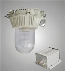 GC101-J42防眩应急泛光灯 GC101防眩应急泛光灯