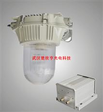 GFE9150防眩应急泛光灯 GFE9150-J35防眩应急泛光灯