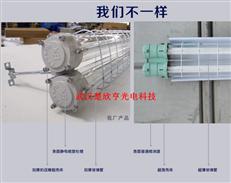 HRY52系列隔爆型防爆荧光灯  IIC单管防爆灯 ⅡB双管防爆荧光灯